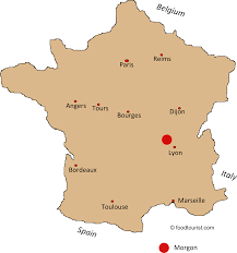 Map Of France Wine Regions by Morgon French Wine Appellation