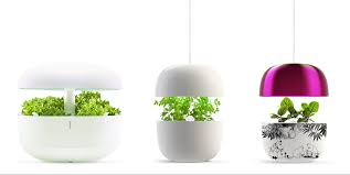 The Smart Garden by Plantui On The Growth Track In Asia And Europe Aboa Advest