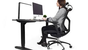 Computer Chair Desk Height Adjustable Standing Desk Uplift Desk