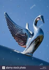 peterbilt truck bird ornament stock photo royalty free image