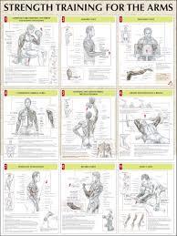 weider platmum plus workouts workout schedule