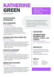 Resume For Board Of Directors Simple Resume Realistic Resume Mycvfactory