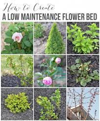 Flower Garden Ideas Create A Low Maintenance Flower Bed Our Front Yard Progress