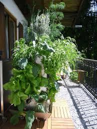 balkon pflanzgefã ãÿe wohnzimmerz hochbeet edelstahl with garten im quadrat moderne