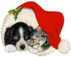 pet christmas free illustration dog cat pet animal christmas free image