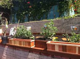 How To Build A Large Raised Garden Bed - how to start a raised bed gardening front yard landscaping ideas