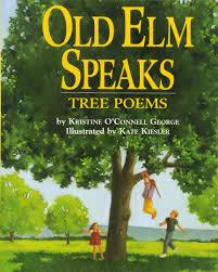 old elm speaks tree poems kristine o u0027connell george kate