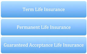 aarp life insurance quotes plus term life insurance quotes term life insurance quotes quotes 93
