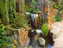 A Small Asian Backyard Goodman Landscape Design - Asian backyard designs