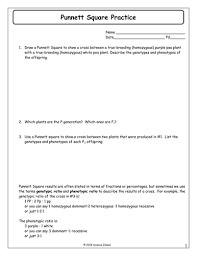 inheritance activities genetics terminology and punnett squares  with punnettsquarepracticedocx from pinterestcom