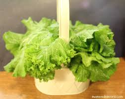 plastic skewers for fruit arrangements make your own edible arrangement for