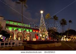 christmas in hawaii stock images royalty free images u0026 vectors