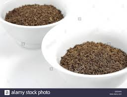 carvi cuisine caraway seeds carum carvi in bowls stock photo royalty free image