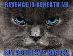 Revenge Memes - evil eye meme google search random and randomer pinterest