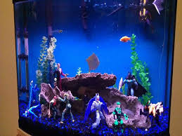 15 best fish tanks images on aquarium ideas fish tank