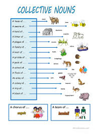 collective nouns worksheet free esl printable worksheets made by