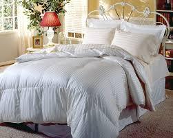 Hotel Sheets 1000 Thread Count Amazon Com Blue Ridge Home Fashions Hotel Grand Silk 1000 Thread