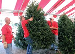 home depot pr black friday 2012 christmas tree lots provide welcome seasonal employment for local