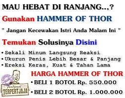 jual hammer of thor di jogja hammer of thor asli obat seksualitas