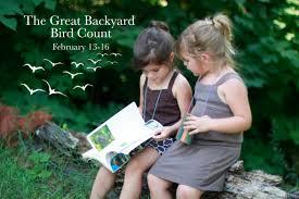 the 2015 great backyard bird count the 2015 great backyard bird