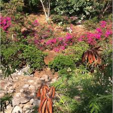 Kona Botanical Gardens Botanical Gardens Kona Hawaii Botanical Garden Kona Hi Kona