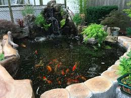 advantages of a backyard pond u2013 politan real estate
