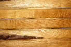 free images tree nature board texture floor building beam