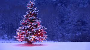 snowy christmas tree wallpapers u2013 happy holidays