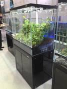 complete aquarium setups cade terrarium tank sydney discus