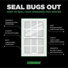 how to seal windows to help keep bugs out terminix