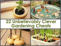 home gardening ideas 22 unbelievably clever gardening cheats jpg