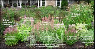 Cottage Garden Layout Defining Your Home Garden And Travel Agastache Garden Plan