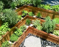 fancy design ideas florida vegetable gardening remarkable
