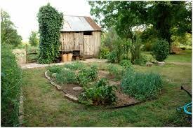 florida vegetable gardening