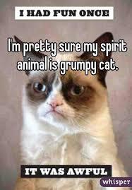 Grumpy Cat Meme I Had Fun Once - m pretty sure my spirit animal is grumpy cat