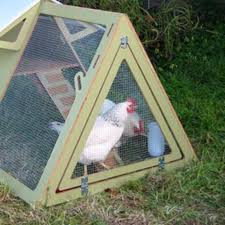 chickencribs cool hunting