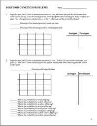 Dihybrid Cross Punnett Square Worksheet Genetics Dihybrid Two Factor Practice Problem Worksheet Tpt