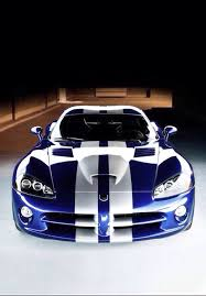 dodge viper snake the snake viper dreams dodge viper viper and dodge