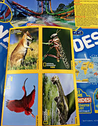 a national geographic magazine summer issue