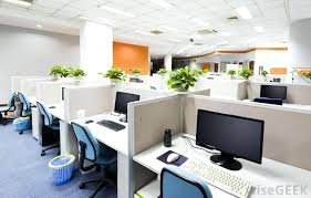 Best Plant For Office Desk Office Desk Office Desk Plant For Cubicle Workers Smaller Plants