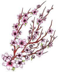 Japanese Flower Artwork - 105 best floral art images on pinterest flowers nature and