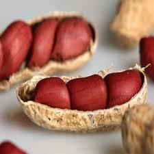 Emagreça comendo amendoim