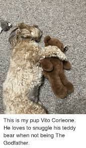 Snuggle Bear Meme - the godfather and the godfather meme on astrologymemes com