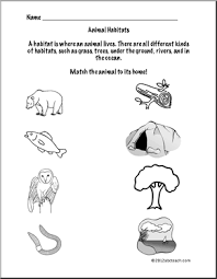 animal habitats worksheet forest animals first grade science