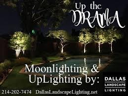 Moonlighting Landscape Lighting 31 Best Outdoor Lighting By Dallas Landscape Lighting Images On