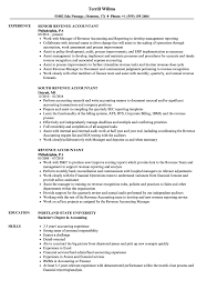 sle resume templates accountants compilation report income revenue accountant resume sles velvet jobs