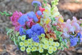 farm fresh flowers amazing heart farmfarm fresh flowers