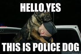 Funny Police Memes - police dog meme dog best of the funny meme