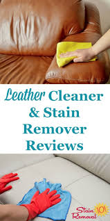 Best Clothing Stain Remover 17 Best Images About Cleaning And Organization Tips On Pinterest