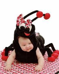 Infant Halloween Costumes 13 Baby Halloween Costumes Images Halloween